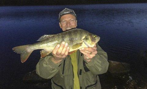 Rå abbor: Ikke bare var den stor. Den var sterk også, abboren som Snorre Paulsen fra Maura tok på hjemmebane i Kvernsjøen. Drøyt 1,3 kilo viste vekta. Foto: Privat