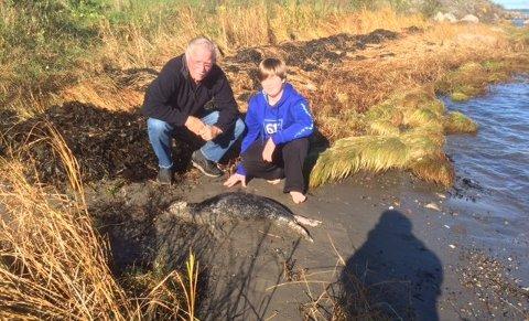 Steinar Olsen og barnebarnet Erlend fant en død selunge på Feskjær.