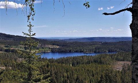VAKKERT: Panoramautsikt over Ørfiske fra Gruvåsen. Her planlegges spisepause.