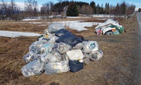 STORE MENGDER: Her er en del av alt søppelet, mye relatert til byggeplasser, som Kari Brox Eilertsen har samlet sammen i fjæra på Tønsnes den siste måneden.