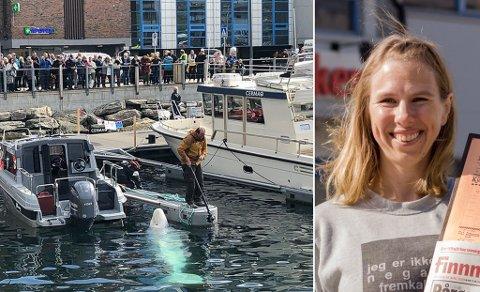 POPULÆR: Folk strømmer til for å se Hvaldimir på nært hold når han oppholder seg i havnebassenget.