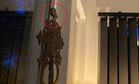 GIGANT: Geithamsen kan bli godt over tre centimeter lang. Dette bildet er tatt i Son i forrige uke.