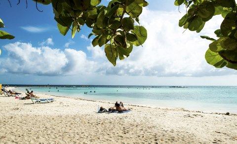DRØMMESTRAND: Palm Beach er en vakker, langstrakt strand med myk korallsand. Ideell for lange turer. Alle FOTO: Jörgen Ulvsgärd/TT