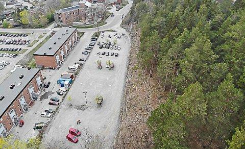 HOGST: Det var her kommunen hogde ned sjelden kalklindeskog.