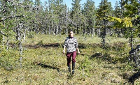 I MYRA: Bak Suzanne Wien skimtes en av de gamle grøftene i Endelausmyrene i Ringsakfjellet som nå er fylt igjen. Wien kan slå fast at det allerede er blautere i terrenget rundt.