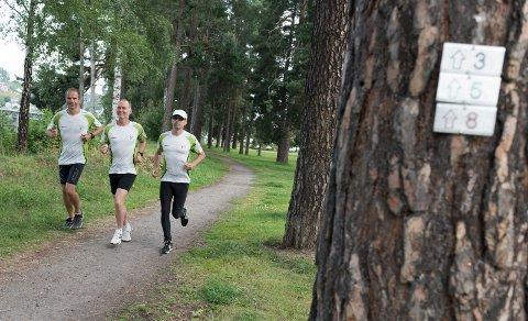 Løper i de nymerkede løypene. Tore Bårnås, Olav Høgset og Anders Lyngbakken.