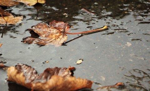 VÅTT OG MILDT: Regnbyger skal komme og gå gjennom hele høstferien.