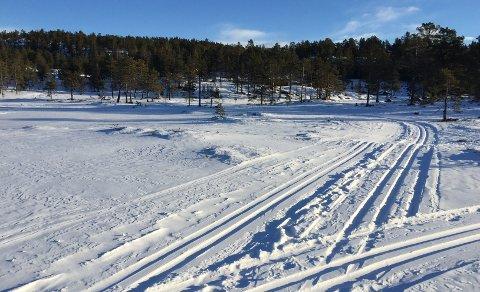 SKIMULIGHETER: Det er ikke store mengder snø i terrenget, men nok til at du får gått på ski.