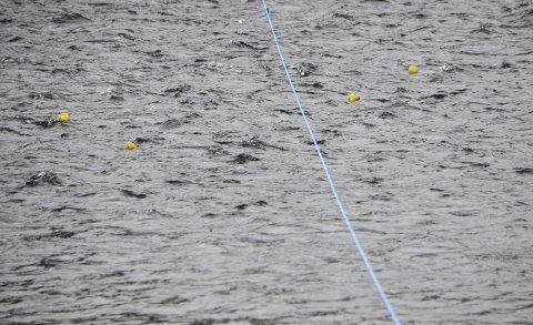 MÅLSTREKEN: Her passerer de tre første gule endene i Glomma målstreken. Og vinneren fikk akselererte like før mål