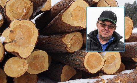 SKOGSEMINAR: Glommen Mjøsen Skog arrangerer skogseminar for norddøler i slutten av november. Per Hermann Køhn Hansæl (innfelt) er områdeleder for skogeierne i Nord-Østerdalen.