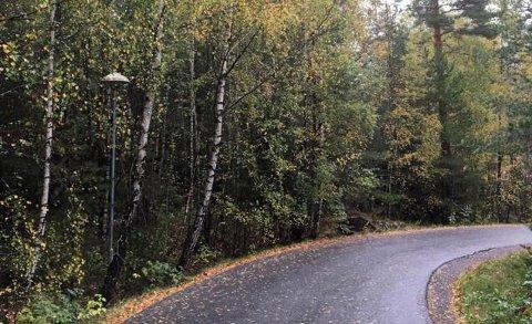 Kommunen må sørg for at veilys ikke blir dekket av vegetasjon. Hvis din egen hage er skyld i at veilys blir tildekke, må du klippe den selv, sier Ås kommune.