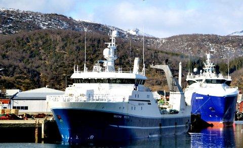 Havfisk-trålerne «Vesttind» og «Gadus Poseidon» i Melbu havn i april 2016. (Foto: Tor Johannes Jensen)