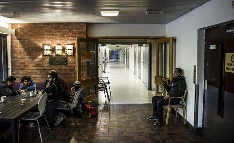 Plass til 240: Akuttovernattingen på Ørmen har foreløpig fått fornyet sin kontrakt til 1. januar 2016. En stor gruppe av beboerne har vært på korttidstilbudet i omtrent to måneder. foto: Geir A. Carlsson