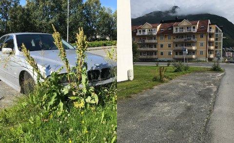 FJERNET: Denne uken ble BMW-en fjernet fra parkeringsplassen. BEGGE FOTO: Jan Westby