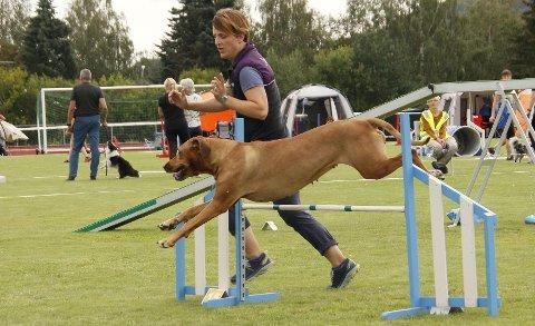 LARGE: Karen-Anne Hassel fra Gran og Enya stiller i klassen for store hunder.