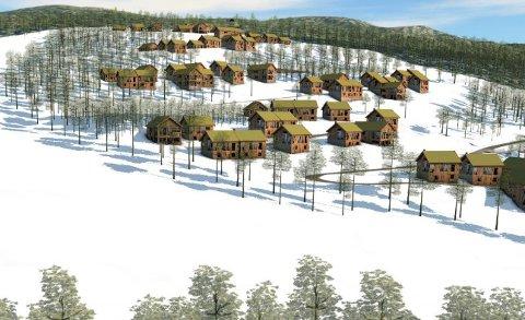 TUNHOVD FJELLGREND: Denne skissen av prosjektet ble vist i kommunestyret i september 2019.