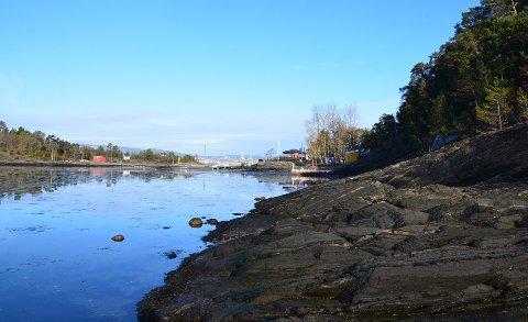 STRANDTOMT: Tomten som er til salgs er en av flere strandparseller i vannkanten syd for Solvik og ut mot sundet mellom Malmøya og Malmøykalven.