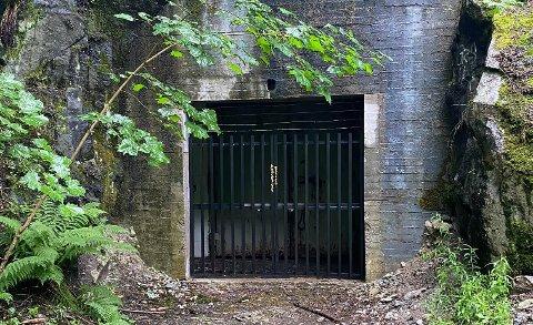 INNGANGSPARTIET NÅ: Slik ser inngangen til bunkeren ut i dag.  Gitteret skal være relativt nytt. Leif-Dan Birkemo tror den nye inngangen er for å hindre folk i å komme seg inn.