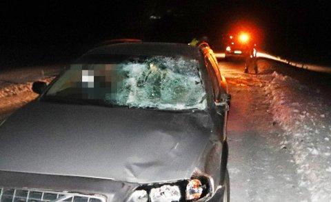 SAMMENSTØT MED HEST: Bilen fikk store skader etter møtet med hesten. Ingen av passasjerene i bilen ble skadet.