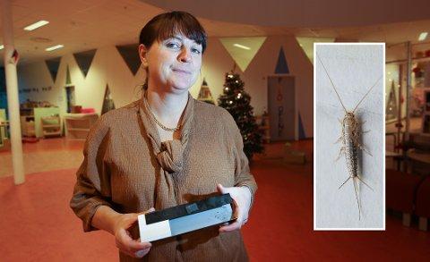Styrer Marit Karlsen i Langhus barnehage håper at alle limfellene skal få ned antall skjeggkre i barnehagen. (Innfeldt bilde er et illustrasjonsfoto fra Rentokil).