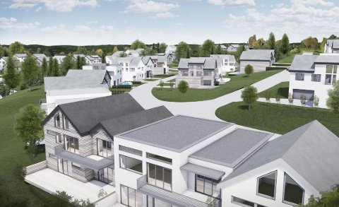 BOLIGER: Illustrasjon som viser boligtyper som kan bli aktuelle på området på Verningen.