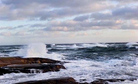 BLÅSER: Det blåser godt i Larvik torsdag, men til kvelden roer det seg nok. Da kommer kanskje bygene. (arkivfoto)