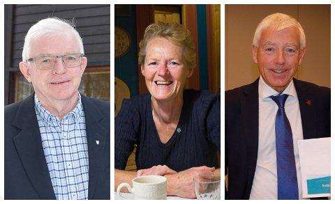 SAMMEN: Ordfører Knut Martin Glesne i Krødsherad, ordfører Sunni Grøndahl Aamodt i Modum og rådmann Tore Isaksen i Ringerike møttes nylig digitalt.