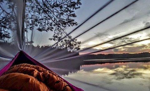Vinner uke 22 og månedens vinner for juni: Et fantastisk flott bilde. En fin kveldshimmel ved et vann rammes inn gjennom en myggnetting. Bildet er litt magisk og suger deg inn i motivet. Bra.       FOTO: Ann-Jelena Fjeld