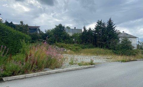 UBEBYGD: Denne ubebygde tomta i Åvegen på Jørpeland har et areal på 823 kvadratmeter, og planen er bygge et fire etasjer stort leilighetsbygg som skal inneholde åtte boliger.