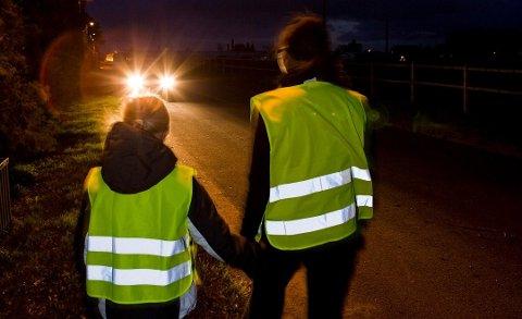 En refleksvest synes godt i mørket. Foto: Pressebilde/ANB