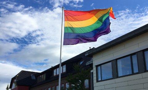 PRIDE: Regnbueflagget vil bli heist under Færder Pride.