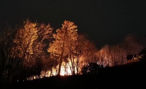 Brannvesenet fryktet at flammene skulle få tak i omkringliggende boliger og vegetasjon.