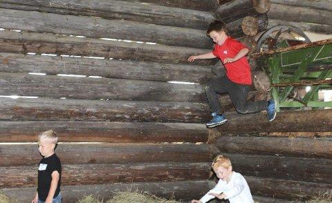I LUFTA: Det ble mye luftig akrobatikk da ungdommen hoppet i høyet på låven. ALLE BILDER: HANS DYBLIE