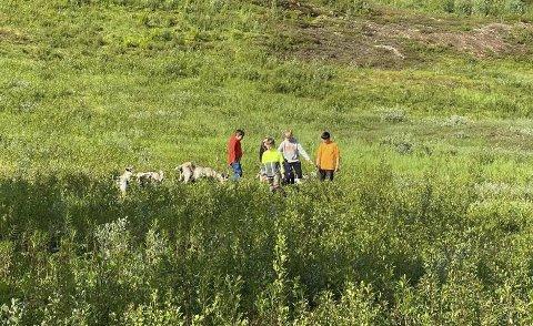 INTERESSANT: Mange barn har vært i slalåmbakken og besøkt geitene som har beitet der i tre måneder.