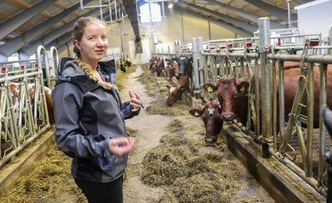 RAMMES: De unge melkebøndene på Fudske Gård rammes av kutt i melkeproduksjonen på landsbasis.