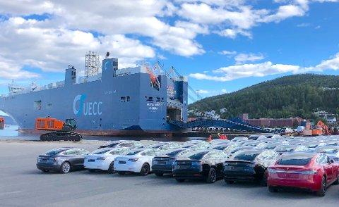 ELBILER: De aller fleste elbiler, som kommer til Norge, er innom Drammen havn. Foto: Drammen havn