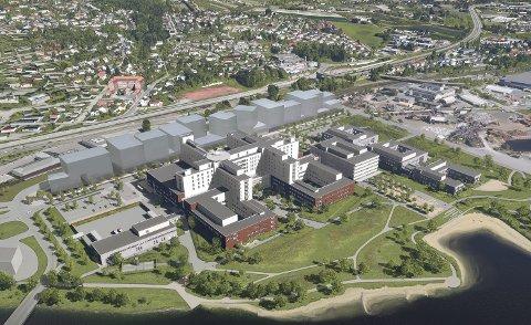 Framtidens sykehus: Det er slik det nye sykehusområdet kan vil seende ut. Her er det rom for alt fra akuttavdeling og legevakt, til psykiatri og store, åpne uteområder. I forkant planlegges også en offentlig strand. Foto: Link arkitektur