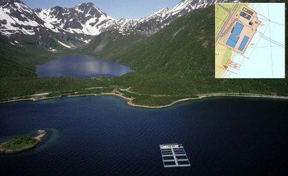 Kraknes på Kvaløya: Her ligger Nofimas nasjonale avlsstasjon for torsk. Akvaplan Niva disponerer den nordlige delen av anlegget, der de nå vil ha forsøk med landbasert oppdrett.
