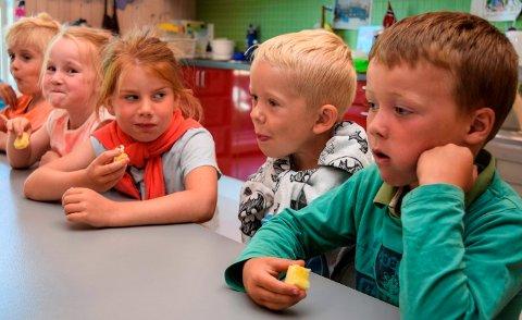 SPENTE SMAKERE: Med en bit fersk annanas i munnen er ungene i Hoffsvangen barnehage spente på hvordan den smaker både for seg selv og andre.