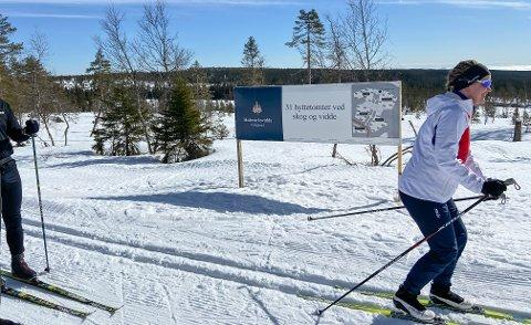 VED LØYPA: De nye hyttetomtene på Budor Sør i Løten har kort veg til skiløypene.