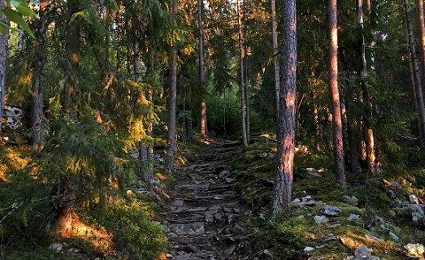 Se på lyset, fargene, naturen som er preget av at mennesker har fulgt egne spor i århundrer.