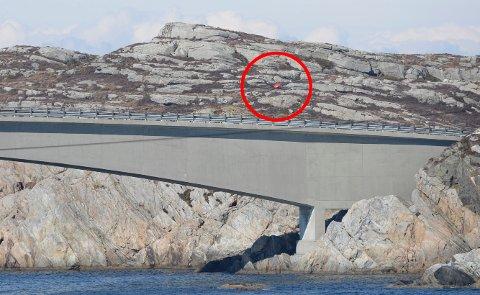 Rotoren ligger på oppsiden av Turøy-broen, et par hundre meter fra der helikopteret styrtet.