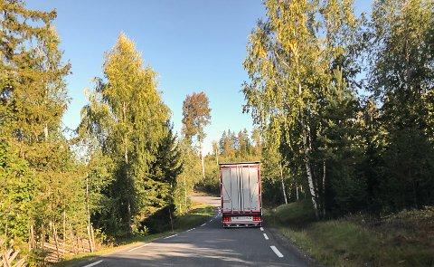 TRANGT: Som en ser av bildet, kan det være utfordrende å møte lastebiler i Eidalsveien. Beboere og andre krever at det må iverksettes ytterligere trafikksikkerhetstiltak, så lenge veien er omkjøringsvei for Sigdalsveien.