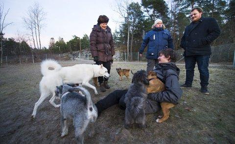 SOSIALT: Hundeparken i Bjørndalen har blitt et samlingspunkt for både to- og firbente de siste tre ukene. Kent Holt (på bakken), Mona Baadsvig, Ole Vikene og Raymond Halvorsen hygger seg i selskap med både hundene og hverandre.