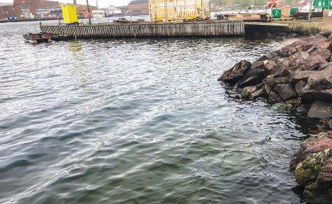 TYNN FILM: Det ligger diesel på vannet i Indre havn, nær Bromsjordet.