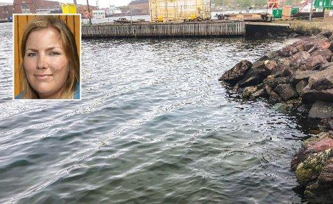 OLJEUTSLIPP: Bildet viser at det lå dieselolje på vannet i Indre havn da utslippet ble oppdaget. Guro Horvei i Horten kommune forteller at de nå har lokalisert hvor utslippet kom fra.
