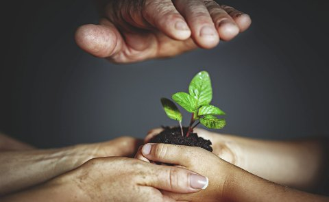 KJÆRLIGHETEN: – Gründeren får ny tro på seg selv, formidler oppmuntring til medarbeidere og ideen justeres av alle til suksess, skriver Jan Boye Lystad. Illustrasjonsfoto: Colourbox