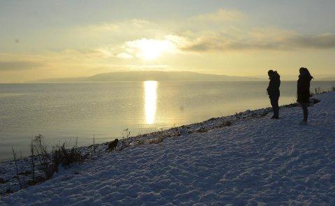 Idyllisk: Arvin Alamdari og Ann-Cathrin Joneid følger med på Kendra som utforsker Mjøskanten i den nye hundeparken på Tjuvholmen.Alle foto: Ragnhild Ekornrud