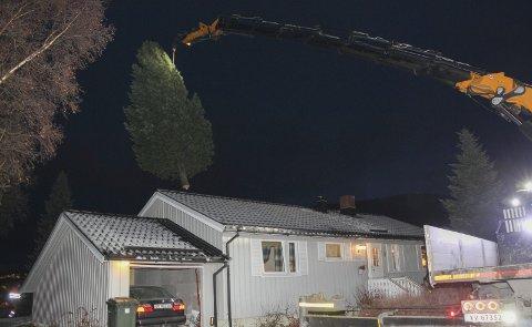 GRYTIDLIG: Det er tidlig tirsdag morgen når operasjon juletre innledes i Johan Lynghaugs veg i Mosjøen. Geir Ove Furre løfter treet over taket med stø hand. Bilder: Rune Pedersen