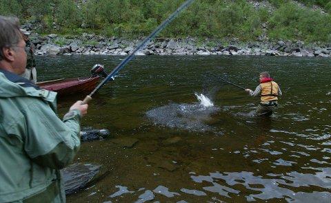 FANGST: Utenlandske laksefiskere blir rammet av korona-restriksjonene. Her er norske fiskere i aksjon i Altaelva. Foto: Ola Solvang